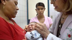 Das Zika-Virus steht im Verdacht, Schädelfehlbildungen auszulösen.