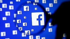 Aktienkurs steigt kontinuierlich: Werbeanzeigen zahlen sich für Facebook aus