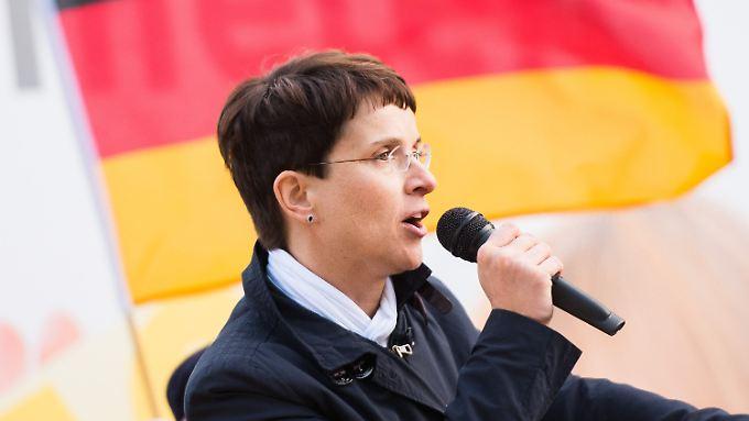 """""""Radikalisieren sich stündlich"""": Schusswaffen-Äußerungen der AfD empören die Politik"""