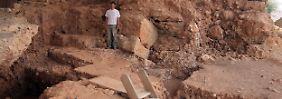 Fundsache, Nr. 1318: Steinzeitmensch kochte Schildkrötensuppe
