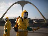 Gefahr im Urlaubsparadies: Mücken verbreiten Viren um die Welt