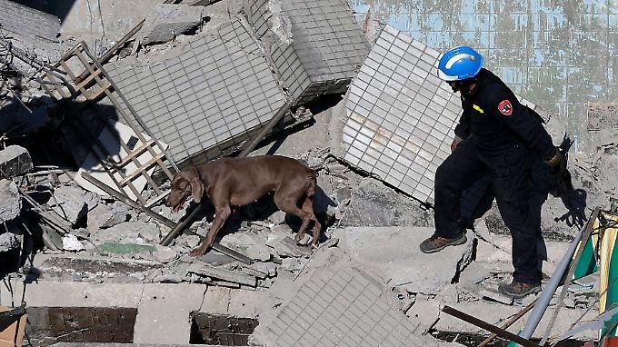 Unter anderem mit Hunden versuchen die Retter, weitere Überlebende aufzuspüren.