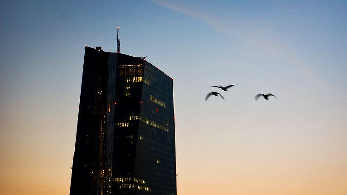 Vögel fliegen am frühen Morgen um das EZB-Gebäude.