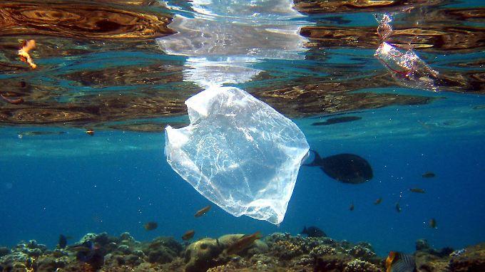 Plastikmüll im Meer: Das Problem könnte mit Hilfe von Bakterien angegangen werden.