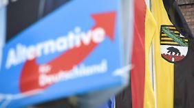 In Sachsen-Anhalt holte die Alternative für Deutschland aus dem Stand fast ein Viertel der Stimmen.