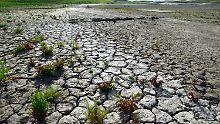2400 Liter Verbrauch pro Burger: Wasser wird weltweit knapper