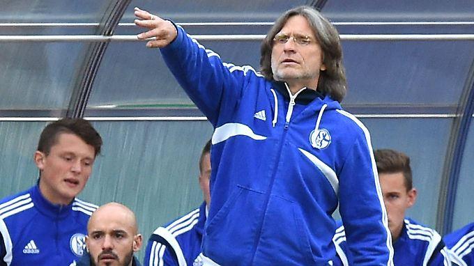 Seit 1996 ist Norbert Elgert Jugendtrainer beim FC Schalke 04.