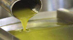 Frisch aus der Mühle: kalt gepresstes Olivenöl.