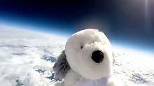 Schulklasse verzweifelt: Plüschhund verschwindet auf Weltraum-Mission
