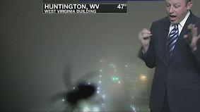 Schreckensschrei vor laufender Kamera: Spinne lässt Wettermoderator die Fassung verlieren