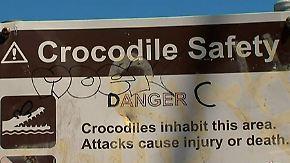 Nächtliches Bad im Ozean trotz Warnung: Frau wird nach Krokodil-Angriff vermisst
