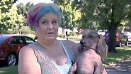 Ganz schön hässlich: Trump-Hund tritt beim Wettbewerb der unansehnlichen Vierbeiner an