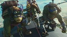 """""""Teenage Mutant Ninja Turtles"""": Wo ist die Anarchie geblieben?"""