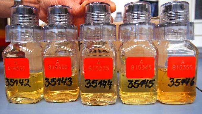 Urinproben werden für die Untersuchung auf verbotene Substanzen vorbereitet.