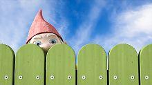 Stress am Gartenzaun: Wie Nachbarn Streit vermeiden