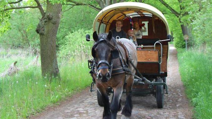 Ein Planwagen-Urlaub bringt Entschleunigung, denn mit einem PS geht es nur langsam voran.