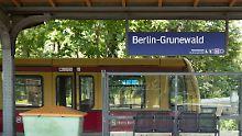 Fitzeks neuer Triller spielt im Berliner Grunewald.