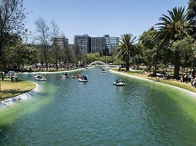 Im Parque La Carolina haben die Stadtplaner eine Lagune angelegt, in der man Tretboot fahren kann. Der Park ist am Wochenende voll mit Quiteños, die ihre freie Zeit mit der Familie genießen.