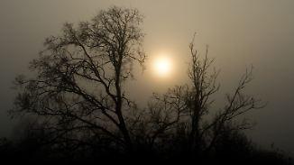 """Hoch """"Uwe"""" geht die Puste aus: Sonne kämpft sich durch dichten Nebel"""