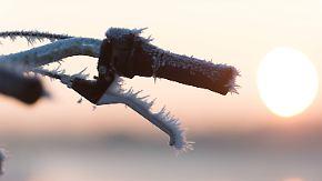 Klirrend kalte Nacht: Temperatur sinkt im Erzgebirge auf -27 Grad