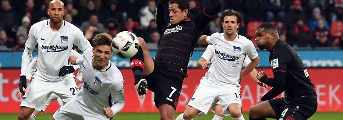 Aufholjagd Richtung Europa: Leverkusen schlägt müde Herthaner