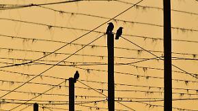 Schauer, Gewitter und Sturmböen: Am Rosenmontag zieht die nächste Kaltfront rein