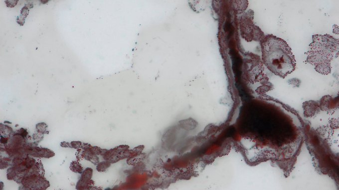 Das Alter der Funde datierten die Forscher auf zwischen 3,77 und 4,29 Milliarden Jahre.