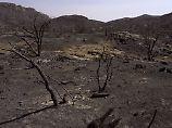 Gefährlicher Navi-Weg: Frau überlebt fünf Tage in der Wüste