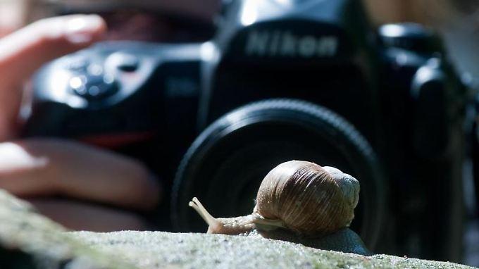 Für Fotos mit schönem Bokeh braucht man Systemkameras.