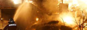 Unglück in Baden-Württemberg: 200 trächtige Säue verenden bei Großbrand