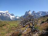 Paradies fast am Ende der Welt: Buchstaben-Wandern in Patagonien