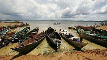 Afrikas größter See fast leer: Victoriabarsch steht vor dem Aussterben