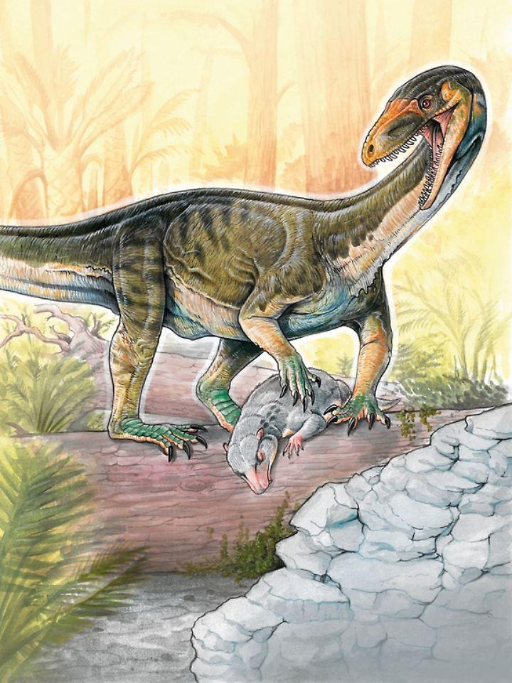 Ein Teleocrater rhadinus jagt einen Cynodonten.