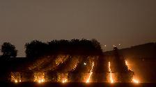 Durch die Wärme der mehr als 200 Kerzen wolle er bei minus einem Grad die Blüten der Pfirsich- und Birnbäumen schützen, sagte Siegel.
