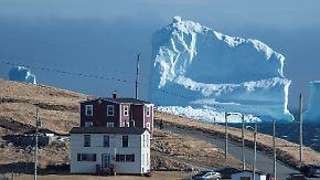 45 Meter hoher Touristenmagnet: Riesige Eisberge schwimmen vor der Küste Neufundlands