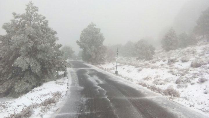 Bei einsetzendem Schneefall hatte der Fahrer offenbar nichts mehr gesehen.