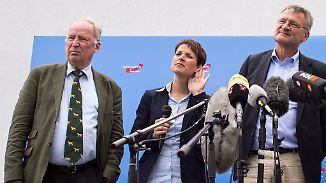 Showdown auf Parteitag erwartet: AfD steht am Scheideweg