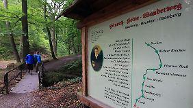 Heinrich-Heine-Wanderweg im Nationalpark Harz: Das Ilsetal im Ostharz bietet Wanderern viele naturbelassene Sehenswürdigkeiten.