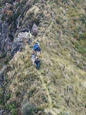 """Der Fuya Fuya ist ein leichter Wanderberg und lockt Touristen an - sie durchschreiten die von Gräsern geprägte alpine Vegetationsstufe der Tropen, die """"Páramo"""" heißt."""