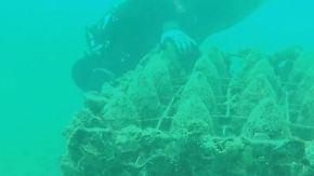Meeresboden statt Kellergewölbe: Kroatischer Hobbytaucher keltert Unterwasserwein