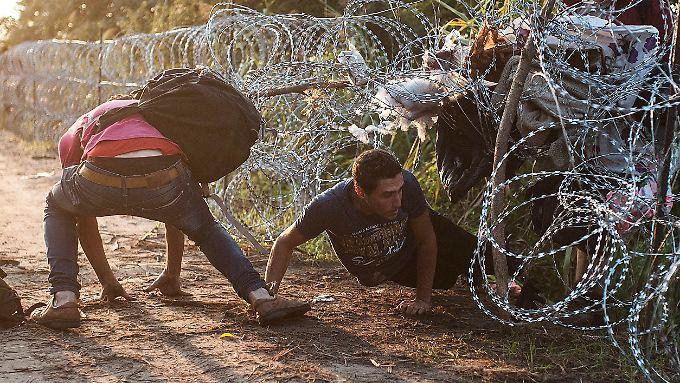 Weil Ungarn keine Flüchtlinge im Land haben wollte, wurde ein Grenzzaun gebaut.