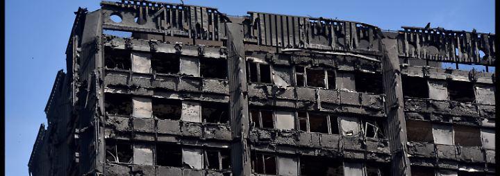 Beim Anblick dieser Bilder, ist zu befürchten, dass sie die Katastrophe nicht überlebt haben.