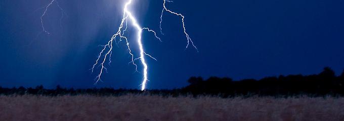 Blitzschlag ist nicht die einzige Gefahr, die einem im Wald bei Gewitter droht.