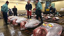 Japanischer Touristen-Hotspot: Tokios Fischmarkt soll umziehen