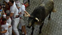 Hatz in Pamplona: Stier spießt Amerikaner am Hoden auf