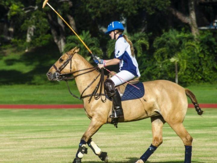Polo wird auch auf Barbados gespielt.