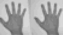 Wissenschaftliche Sensation: Forscher speichern Film in Bakterien-Erbgut