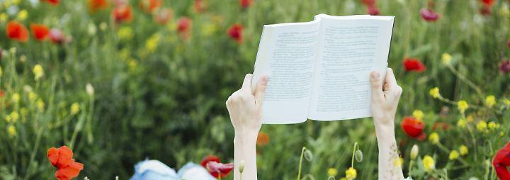 Männer, Frauen und ein Reh: Besondere Bücher für den Urlaub