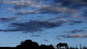 Unruhiger Samstag: In der Nacht kommt es zu vereinzelten Gewittern