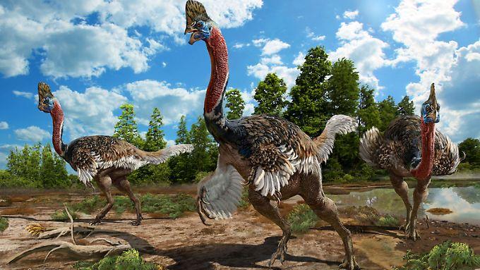 Grafische Rekonstruktion von Corythoraptor jacobsi.